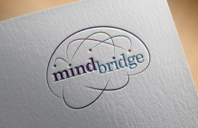 Mindbridge branding